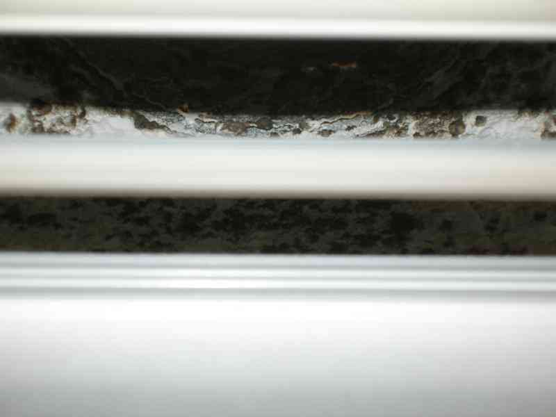 Air Conditioning Issues Mould Complaints Saniservice Blog