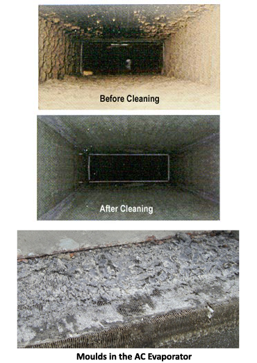 Before and After pictures of Saniservice AC Cleaning service